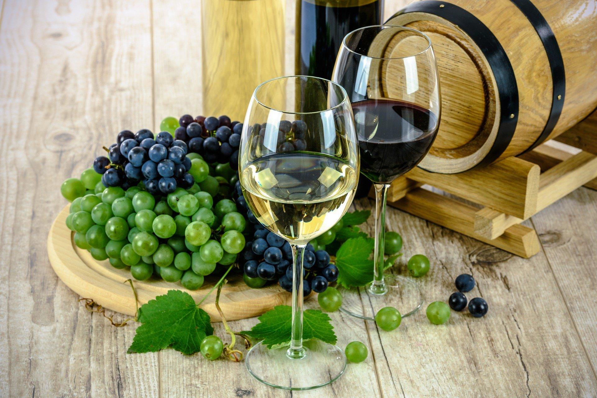Da loja online para a física: como a Wine democratizou o acesso do brasileiro aos vinhos