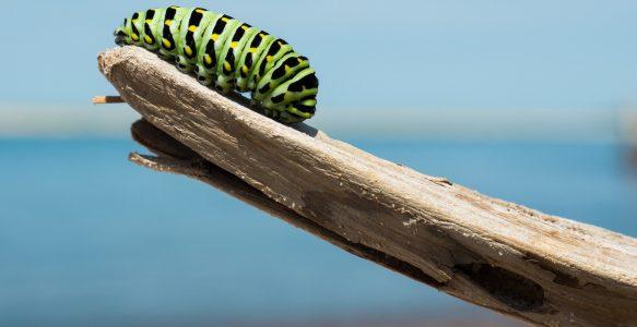 Transformação digital: 3 erros que podem impedir seu negócio de dar o próximo passo
